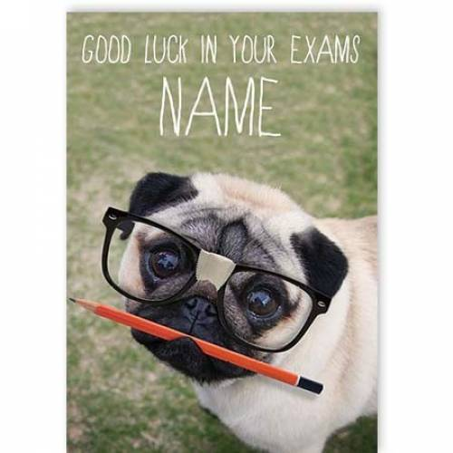 Pug And Pencil Good Luck In Your Exams Card