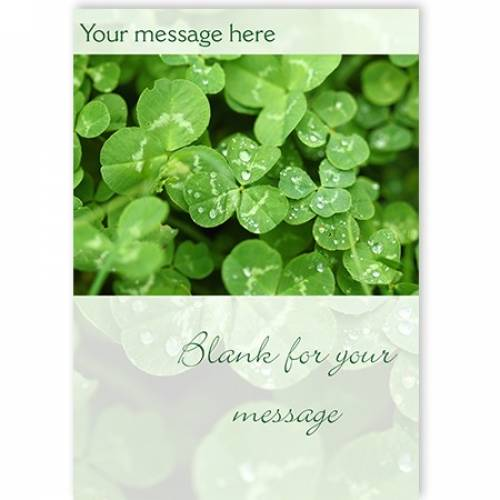 Shamrocks Insert Any Message Irish Card