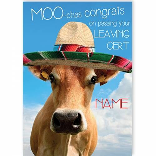 Congrats On Passing Your Leaving Cert, Bull In Sombrero Card