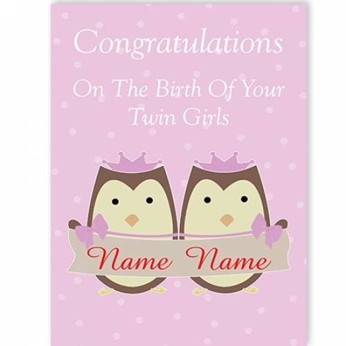Owls Birth Of Your Girl/Girl Twins Congratulations Card