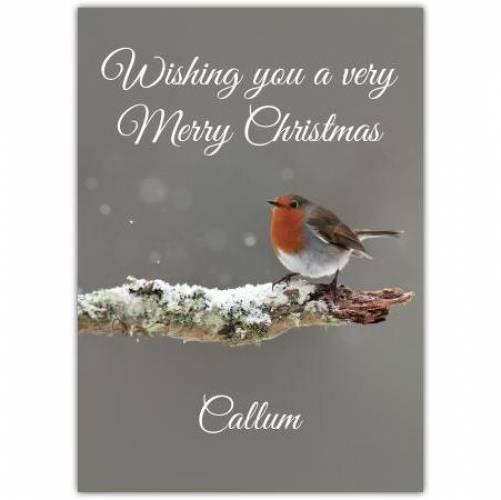 Merry Christmas Robin On A Branch Card