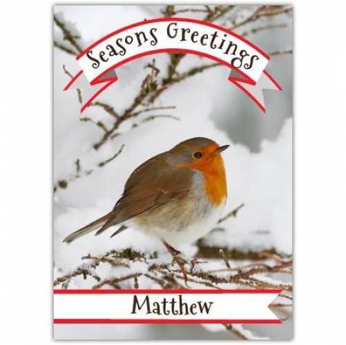 Seasons Greetings Robin Card