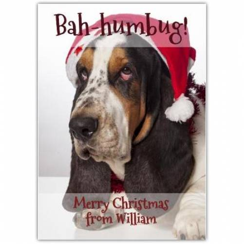 Bah-humbug Dog Christmas Card
