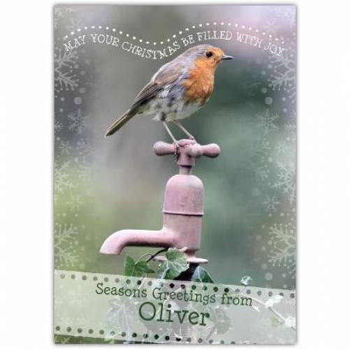 Robin May Your Christmas Be Filled With Joy Seasons Greetings Card
