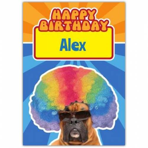 Afro Boxer Dong Birthday Card