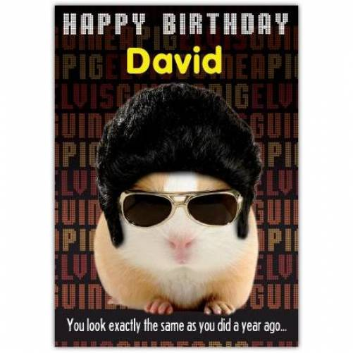 Sozzled Guinea Pig Birthday Card