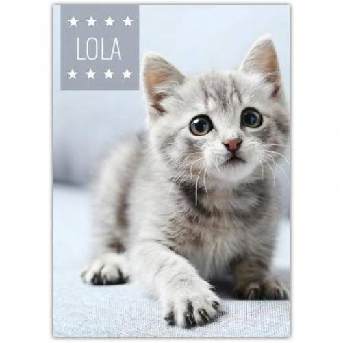 Pet Photo Card