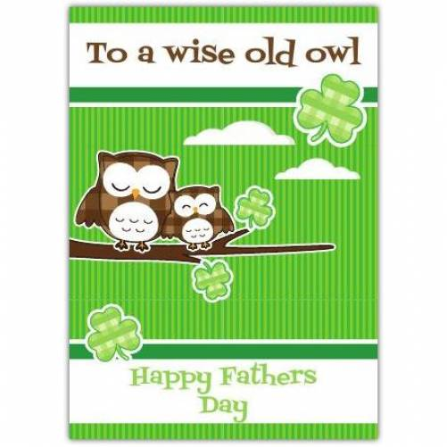 To A Wise Old Owl Happy Father's Day Card