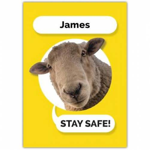 Stay Safe Sheep Greeting Card