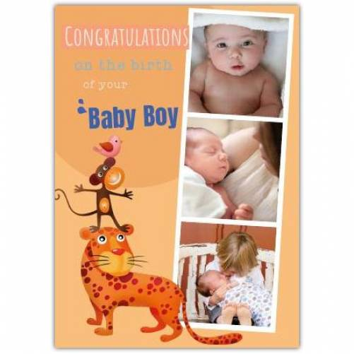 Congratulations Baby Boy Tiger And Three Photos Card