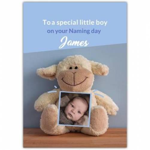 New Baby Boy Sheep Teddy  Card