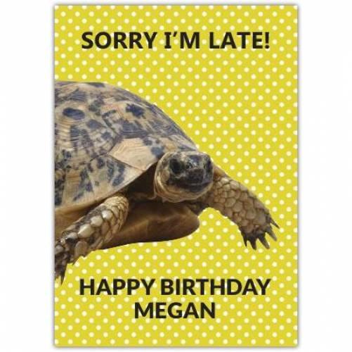 Happy Belated Birthday Tortoise Card