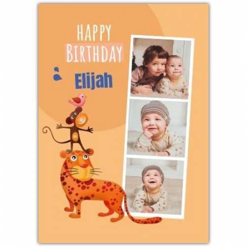 Happy Birthday 3 Photos Tiger Monkey And Bird Card