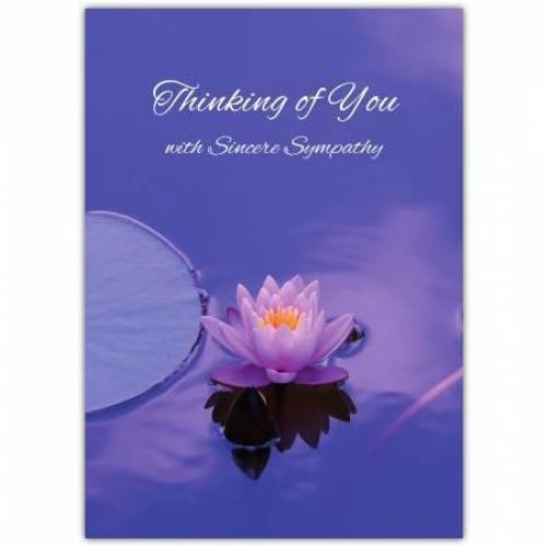 Sympathy Purple Water Lily  Card