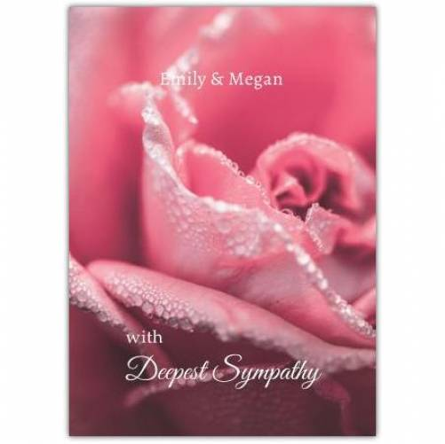 Deepest Sympathy Pink Rose Card