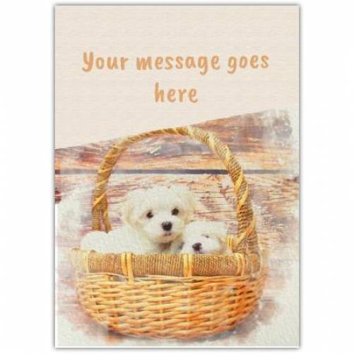 Any Message Puppies In A Basket Card