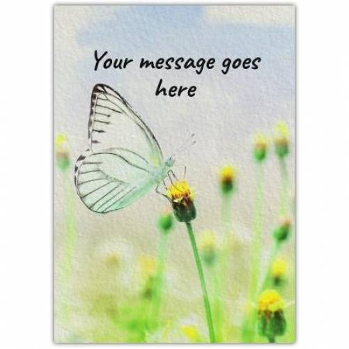 Any Message Butterfly On Flower Card